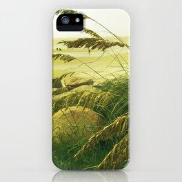 Beach Grass - Fripp Island, South Carolina iPhone Case