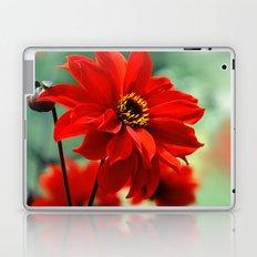 Dahlia red 082 Laptop & iPad Skin