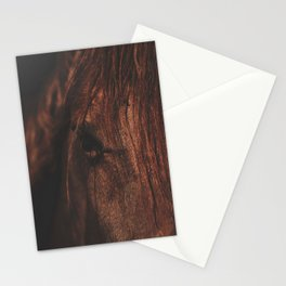Horse - Sioux Stationery Cards