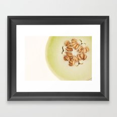 honeydew Framed Art Print