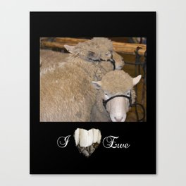 Wooly Love Canvas Print