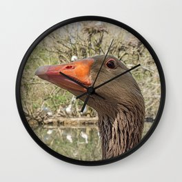 Close up portrait of Greylag goose Wall Clock