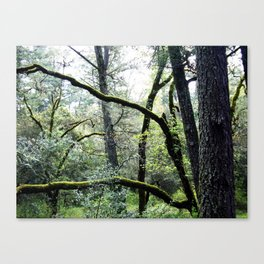as nature intended Canvas Print