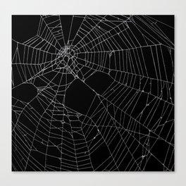 SpiderWeb Web Canvas Print