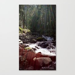 (#48) Sun-rays over Water Canvas Print