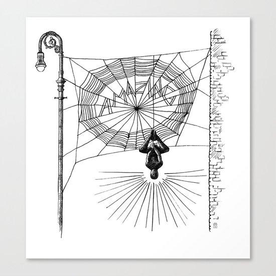Peter's Web Canvas Print