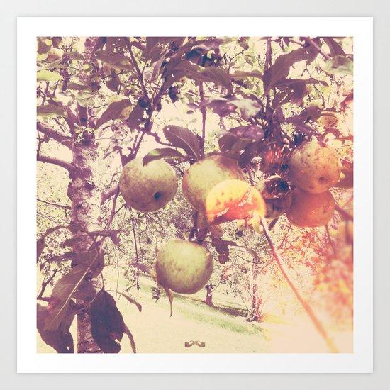 Harvest. Art Print