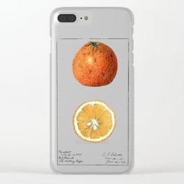 Citrange Clear iPhone Case