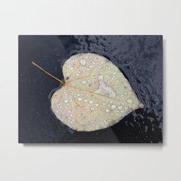 A Leaf in the Rain Metal Print