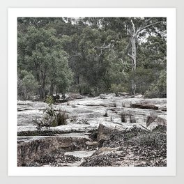 Rugged rocky bushland view Art Print