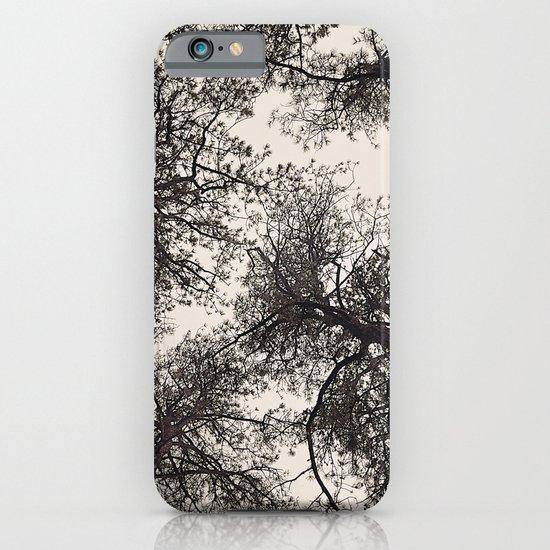 tree tops iPhone & iPod Case