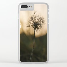Single, wilted dandelion against blurry natural background during sunset. Clear iPhone Case