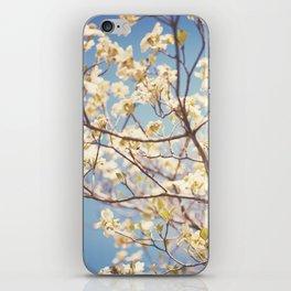 Dogwood Tree - Spring Flowering Tree Photography iPhone Skin