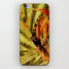 Butterfly on Crosmosia iPhone & iPod Skin