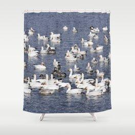 Snow Geese at Centennial Beach Shower Curtain