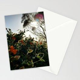 Edge of Paradise Stationery Cards