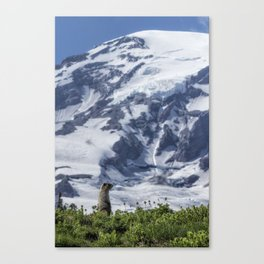 Marmot Checking Out His Neighborhood at Mount Rainier, No. 2 Canvas Print