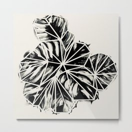 Calathea Succulent Black White Print Metal Print