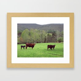 With the Young Calves Framed Art Print