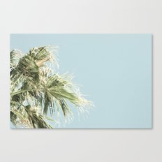 Palm Trees and a Cool Breeze Canvas Print