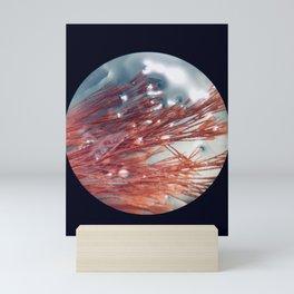 Corallina species Mini Art Print