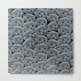 cute collage pattern shorthair grey cat Metal Print