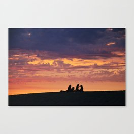 Chilling in the sun Canvas Print