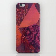 Carson iPhone & iPod Skin