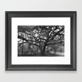 Black and White Mossy Oak Framed Art Print