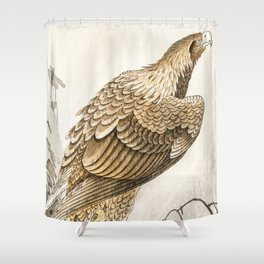 Golden eagle on the tree - Vintage Japanese woodblock print Shower Curtain