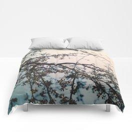 dreaming 2 Comforters