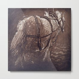 Percheron Horse Metal Print