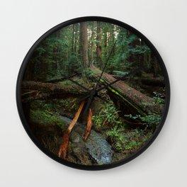 Humboldt Redwoods State Park Wall Clock