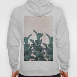 Dreaming candy with rubber trees in group Hoody