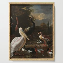 Melchior d'Hondecoeter - A pelican and other fowl at a water basin, known as 'The floating feather' Serving Tray