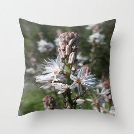 Drimia Maritima Throw Pillow