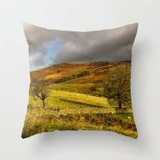 Gowbarrow Fell, Lake District Throw Pillow