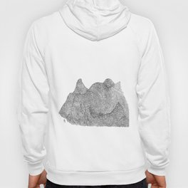 A Break up in the mountains  Hoody