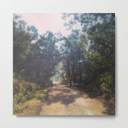 Forest Roads, Ooty Metal Print