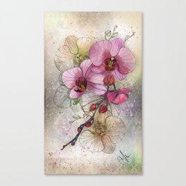 tiny, perfect beauty Canvas Print