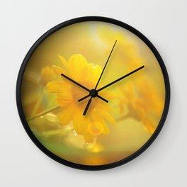 sunny evenings Wall Clock