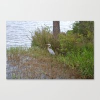 crane Canvas Prints featuring crane by Tiffany Davis Kornacki