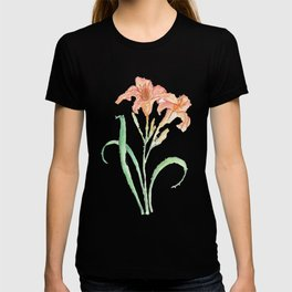 Hemerocallis (Day Lily) T-shirt