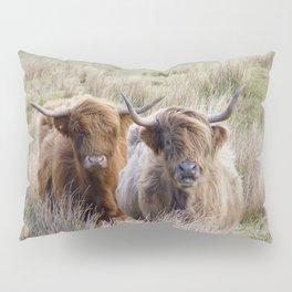 Highland Beef Scotland Pillow Sham