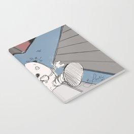 Humpty Dumpty's Free Fall Notebook