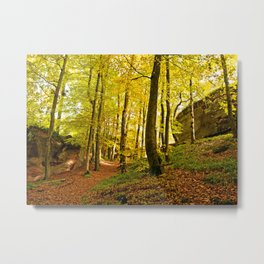 Rocky forest in the fall Metal Print
