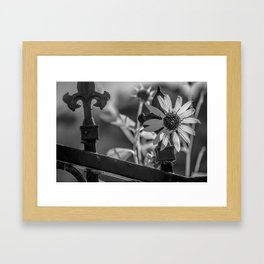 Colorless Framed Art Print