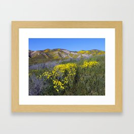 Carrizo Plain National Monument California Framed Art Print