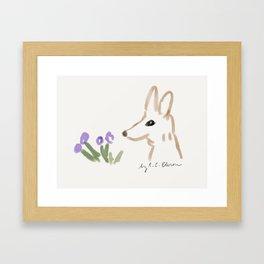 Kit Fox Framed Art Print