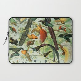 Birds of Paradise poster Laptop Sleeve